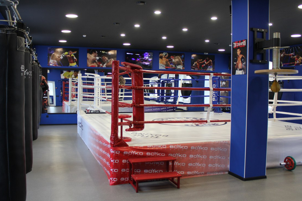 обзор картинки спортзала по боксу роскошные интерьеры дворца